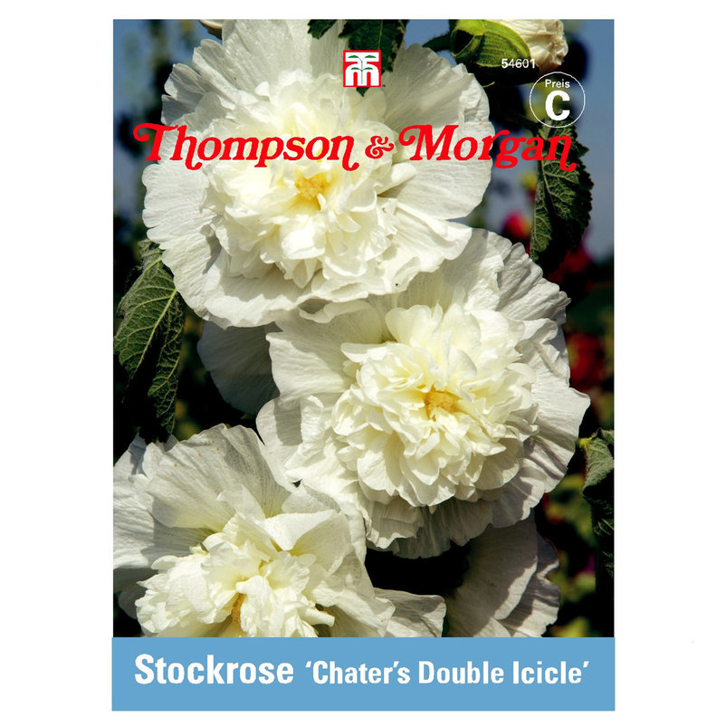 Thompson & Morgan Stockrose ´Chater´s Double Ic...